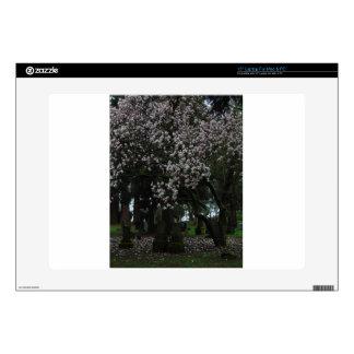 "Magnolias Forever 15"" Laptop Skins"