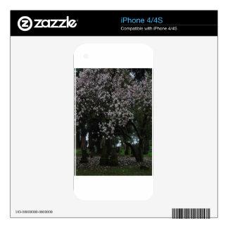 Magnolias Forever iPhone 4S Decals