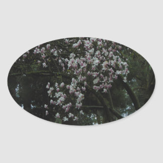 Magnolias Forever Oval Sticker