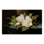Magnolias gigantes, Heade, flores del Victorian Póster