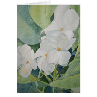 Magnolias in Texas  Greeting Card