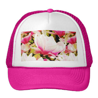 Magnolias in the sun hats