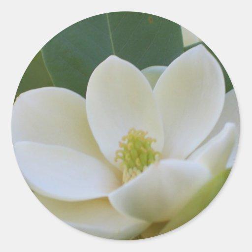 Magnolias meridionales de CricketDiane Pegatina Redonda