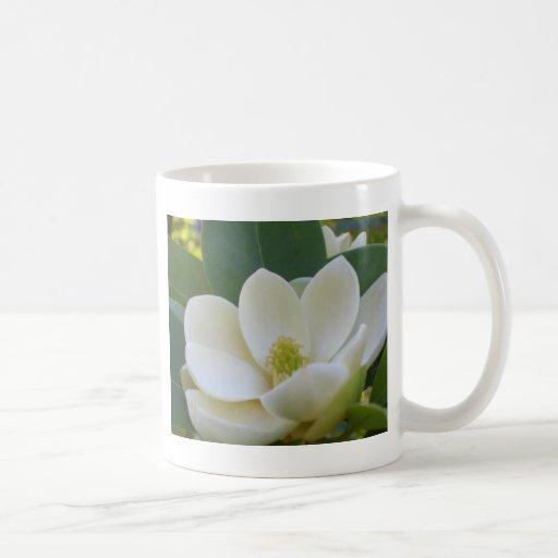 Magnolias meridionales de CricketDiane Tazas