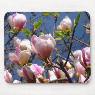 Magnolias Mouse Pad