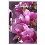 Magnolias Pizarras