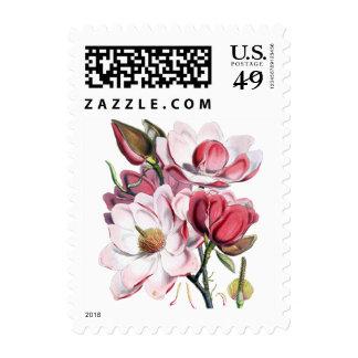 Magnolias Postage Stamps