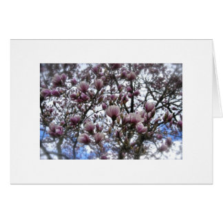 Magnolias Stationery Note Card