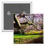 Magnolias y Forsythias Pin
