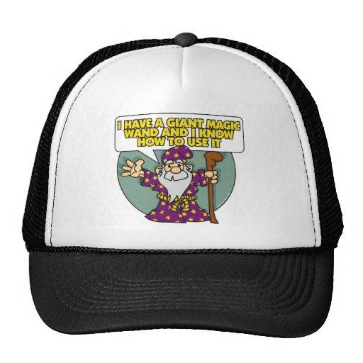 Mago con el gorra de la vara