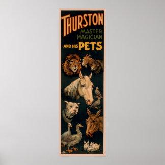 Mago principal de Thurston y sus mascotas Póster