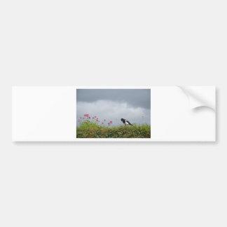 Magpie and wild flowers. bumper sticker