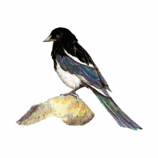 Magpie, Bird, Wildlife, Nature, Ornament Standing Photo Sculpture