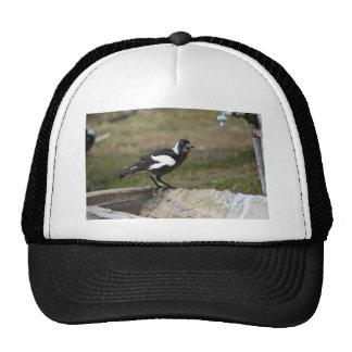 MAGPIE BLACK & WHITE RURAL QUEENSLAND AUSTRALIA TRUCKER HAT