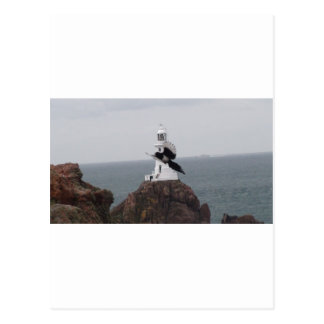 Magpie flying past La Corbiere Lighthouse Postcards