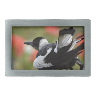 MAGPIE IN RURAL QUEENSLAND AUSTRALIA RECTANGULAR BELT BUCKLE