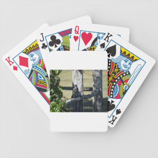 MAGPIE ON FENCE IN RURAL QUEENSLAND AUSTRALIA BICYCLE PLAYING CARDS