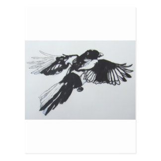 Magpie Post Cards