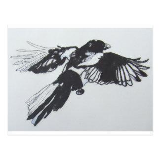Magpie Postcards