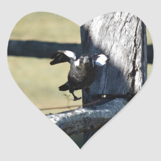 MAGPIE READY TO FLY ON FENCE AUSTRALIA HEART STICKER