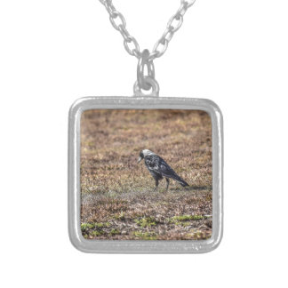 MAGPIE RURAL AUSTRALIA ART EFFECTS SILVER PLATED NECKLACE