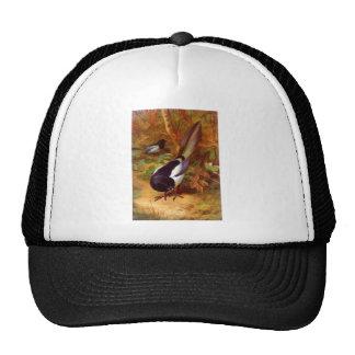 Magpie wild bird trucker hat