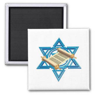 Maguen David Torah Magnet