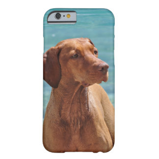 Magyar Vizsla Dog Barely There iPhone 6 Case
