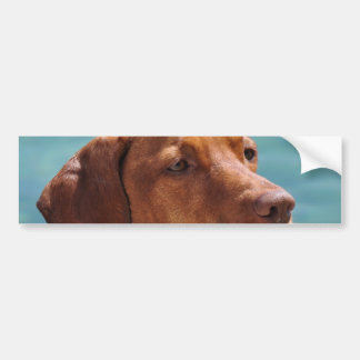 Magyar Vizsla Dog Bumper Sticker