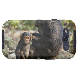 Mahale Mountains National Park, Tanzania Galaxy S3 Covers