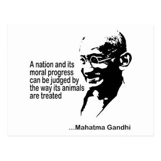 Mahatma Gandhi Animal Rights Postcard