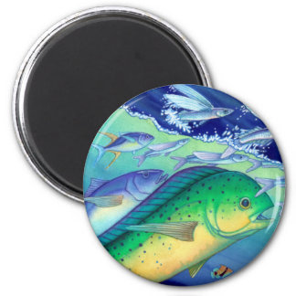 Mahi Mahi (Dolphin Fish) chasing Flying Fish Magnet