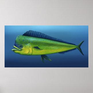 Mahi-Mahi Fish - 17x34 Marine Art Poster Print