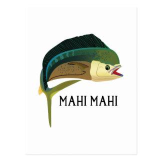 MAHIMAHI  FISH POSTCARD