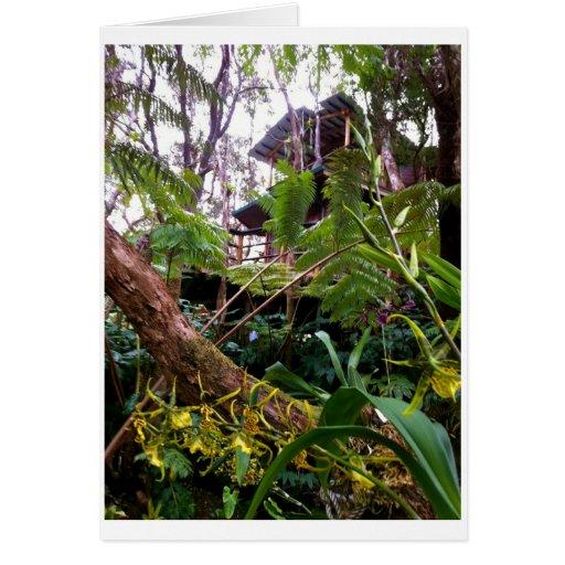 Mahinui Na Lani Treehouse Cards