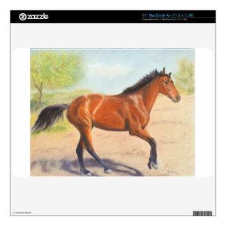 Mahogany Bay Horse Pastel Decals For MacBook