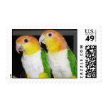 Maia and Shamrock Postage Stamps