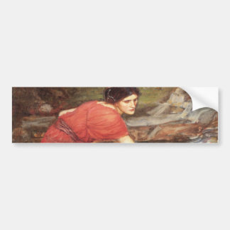 Maidens Picking Flowers by John William Waterhouse Car Bumper Sticker