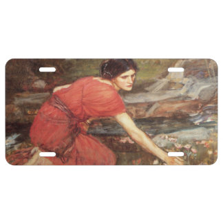 Maidens Picking Flowers by John William Waterhouse License Plate