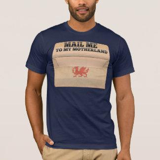 Mail me to Patagonia T-Shirt
