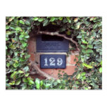 Mailbox Slot Number 129 Ivy Postcard
