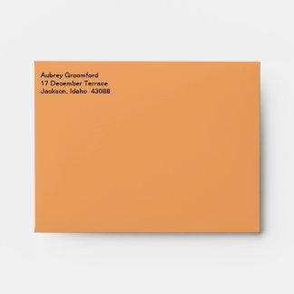 Mailing Designer Sandy Brown Envelope