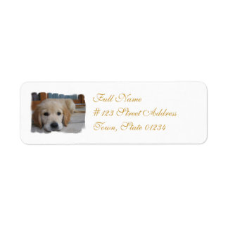 Mailing Label-2 - Customized Label