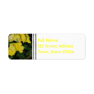 Mailing Label Template 1 - Customized Return Address Label