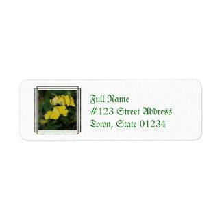 MailingLabel-3 - Customized Return Address Label