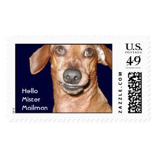 Mailman Dachshund Postage stamps