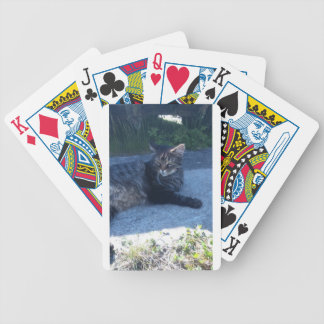 Main cool cat bicycle playing cards