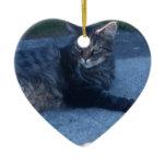 Main cool cat ceramic ornament