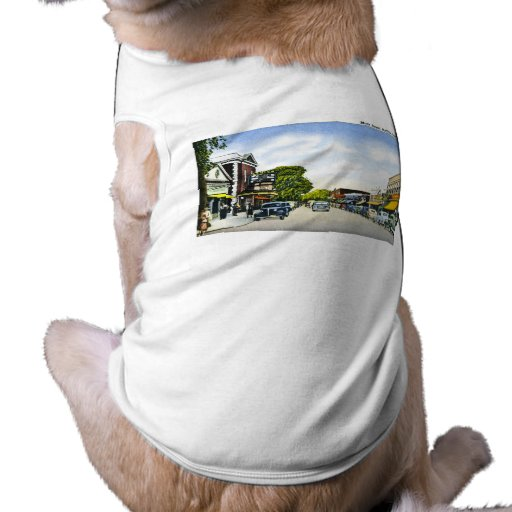 Main Street, Hyannis, Cape Cod, Massachusetts Doggie Tee Shirt