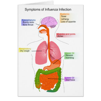Main Symptoms of an Influenza Infection Diagram Card